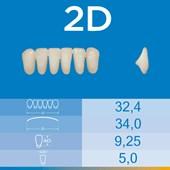 Dente Biotone Anterior Inferior 2D