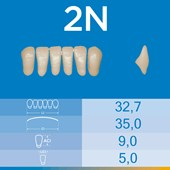 Dente Biotone Anterior Inferior 2N