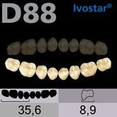 Dente Gnathostar Posterior Inferior - D88
