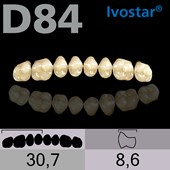 Dente Gnathostar Posterior Superior - D84
