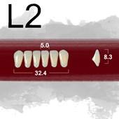 Dente New Ace Anterior Inferior - L2