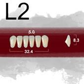 Dente New Ace Anterior Inferior - L2