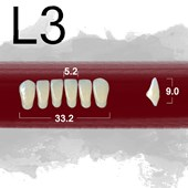 Dente New Ace Anterior Inferior - L3
