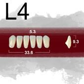 Dente New Ace Anterior Inferior - L4