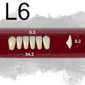 Dente New Ace Anterior Inferior - L6