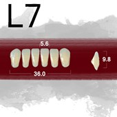 Dente New Ace Anterior Inferior - L7
