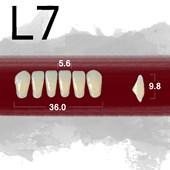 Dente New Ace Anterior Inferior - L7