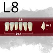 Dente New Ace Anterior Inferior - L8