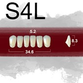 Dente New Ace Anterior Inferior - S4L