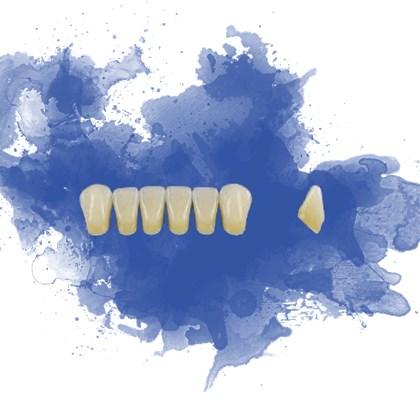 Dente Trilux Anterior Inferior K12