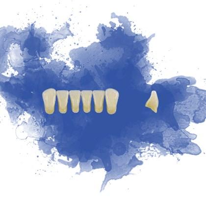 Dente Trilux Anterior Inferior L10