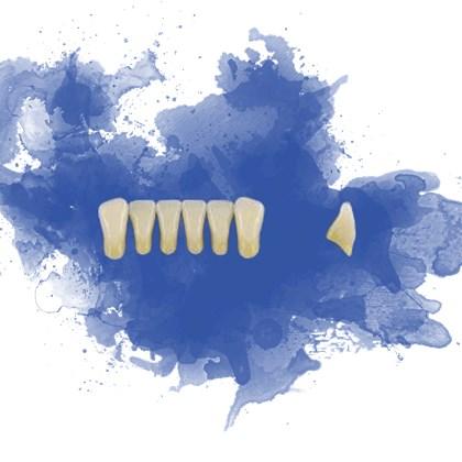 Dente Trilux Anterior Inferior L7
